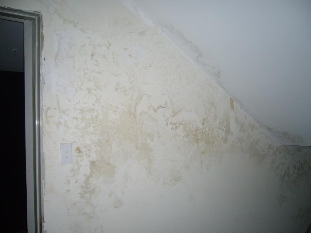 thấm-tường